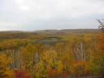 mn fall panorama leaves turned